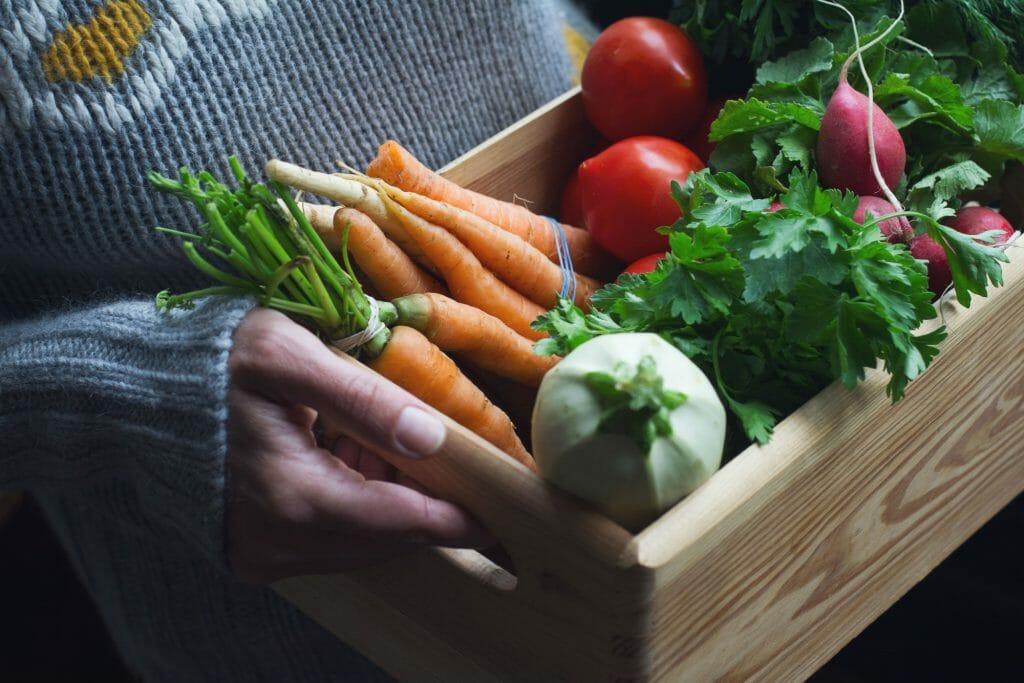 Photo of Cultiver ses fruits et légumes dans son propre potager en centre ville à Bordeaux, c'est possible !