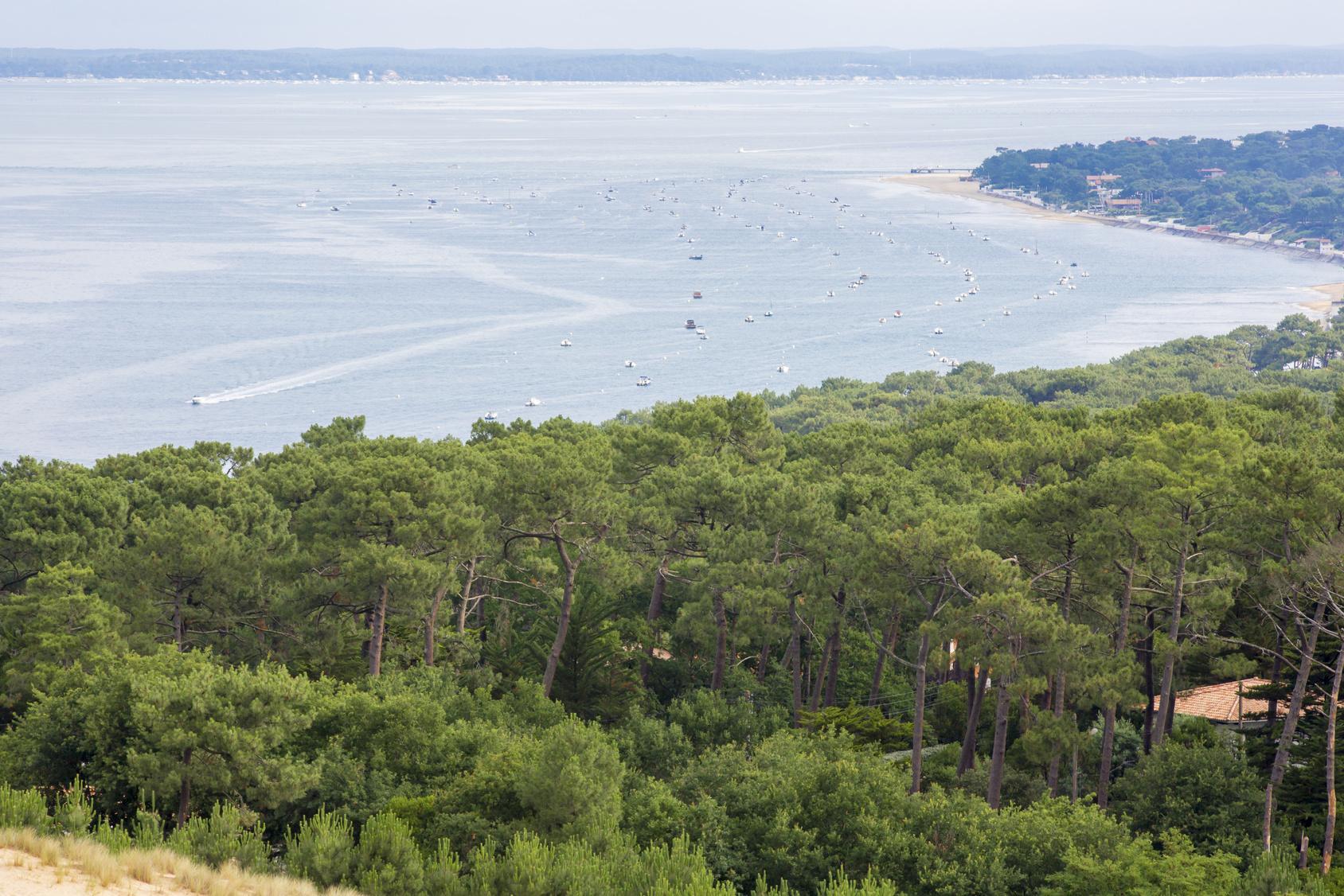 Photo of Trois idées de sorties pour le week-end autour de Bordeaux