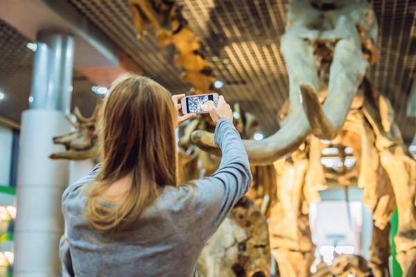Photo of Le muséum d'histoire naturelle va bientôt rouvrir ses portes