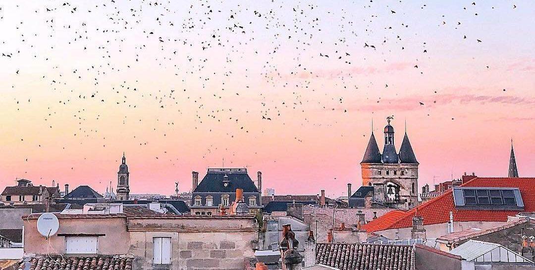 Photo of Quoi faire à Bordeaux cette semaine du 13  janvier ?