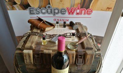 Escape game oenannim dans les vignes à Bordeaux
