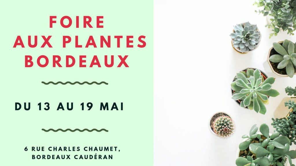 Foire-aux-plantes-visuel-jpg
