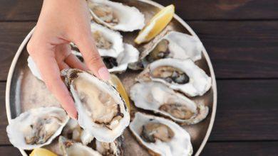 Photo of TOP des adresses où manger des huîtres à Bordeaux