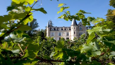 Photo of Garden Party au Chateau Haut-Bergey