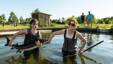 Photo of Visite insolite de la ferme du Caviar de Neuvic