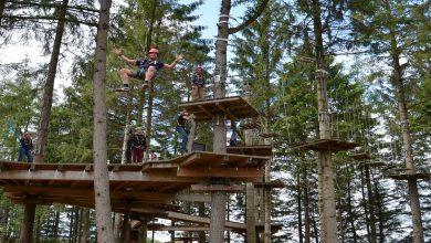 Photo of Arbor-et-Sens pour une journée en famille en pleine nature