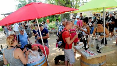 Photo of BON PLAN AU JARDIN PUBLIC : Ce weekend dégustez gratuitement du bon vin🍷