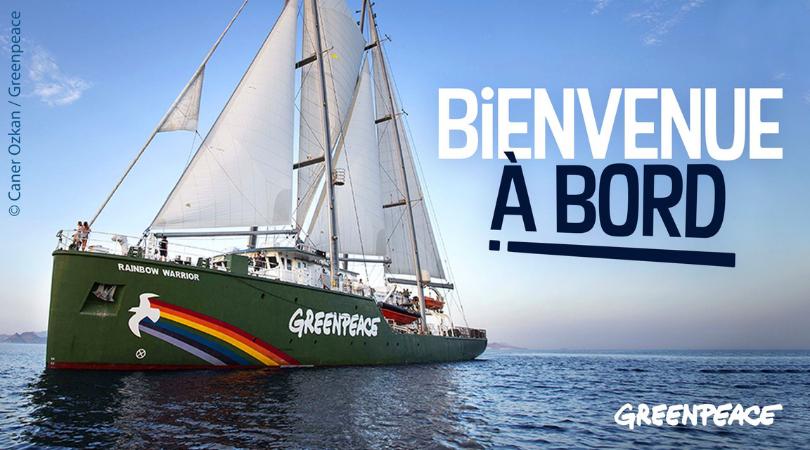 Voilier Greenpeace