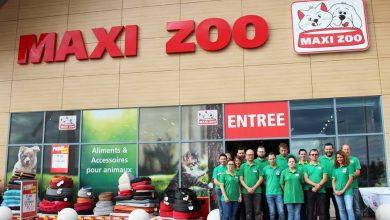 Photo of BÈGLES : NOUVEAU découvrez Maxi ZOO le temple dédié pour les animaux.