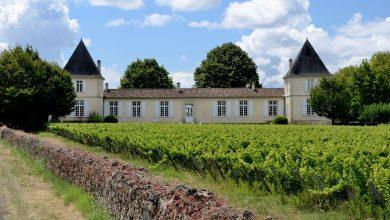 Photo of Top 7 des meilleurs châteaux à visiter dans le Bordelais