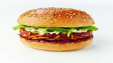 Photo of INSOLITE : Faites-vous livrer des burgers aux insectes à Bordeaux