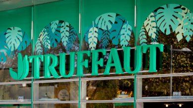 Photo of L'enseigne Truffaut va ouvrir une jardinerie à Mériadeck