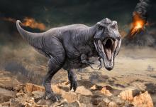 Photo of Une expo sur les dinosaures au Bouscat