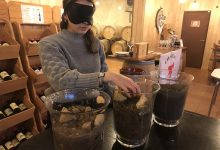 Photo of Découvrez Wine in Black : visite et dégustation de Saint-Emilion Grands crus dans le noir