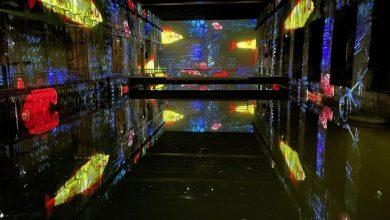Photo of Les premiers tests pour les Bassins de lumières ont débutés