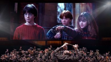 Photo of Ciné-concert Harry Potter exceptionnel à Bordeaux en 2021