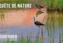 Photo of Cet été, la Surfrider foundation organise un escape game en pleine nature