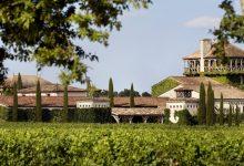 Photo of 5 vignobles girondins classés parmi les meilleurs du monde