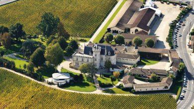 Photo of Tous les Jeudis venez vous détendre aux Soirées Jeudi-Vin au Château Pape Clément