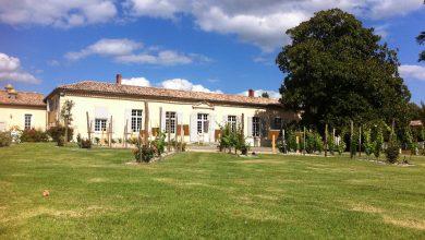 Photo of La Maison des Vins de Cadillac met en place un drive au coeur de Bordeaux