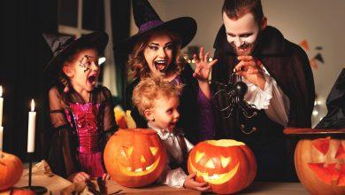 Photo of RDV samedi pour célébrer Halloween au Domaine de Raba 🎃