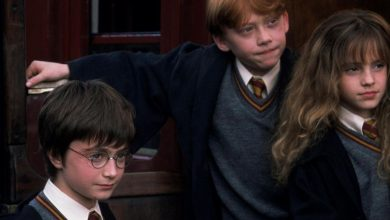 Photo of L'Arkea Arena propose un ciné-concert Harry Potter géant pour Noël 2021