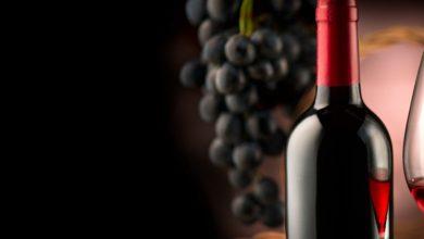 Photo of «Test Covid», le nouveau vin à la mode produit par un viticulteur Bordelais